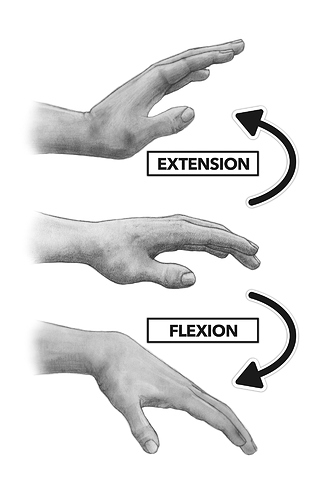CF_WRIST_FLEXION_EXTENSION_BW (1)